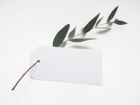 blank tag with leaf